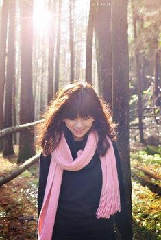 森林中的G大调